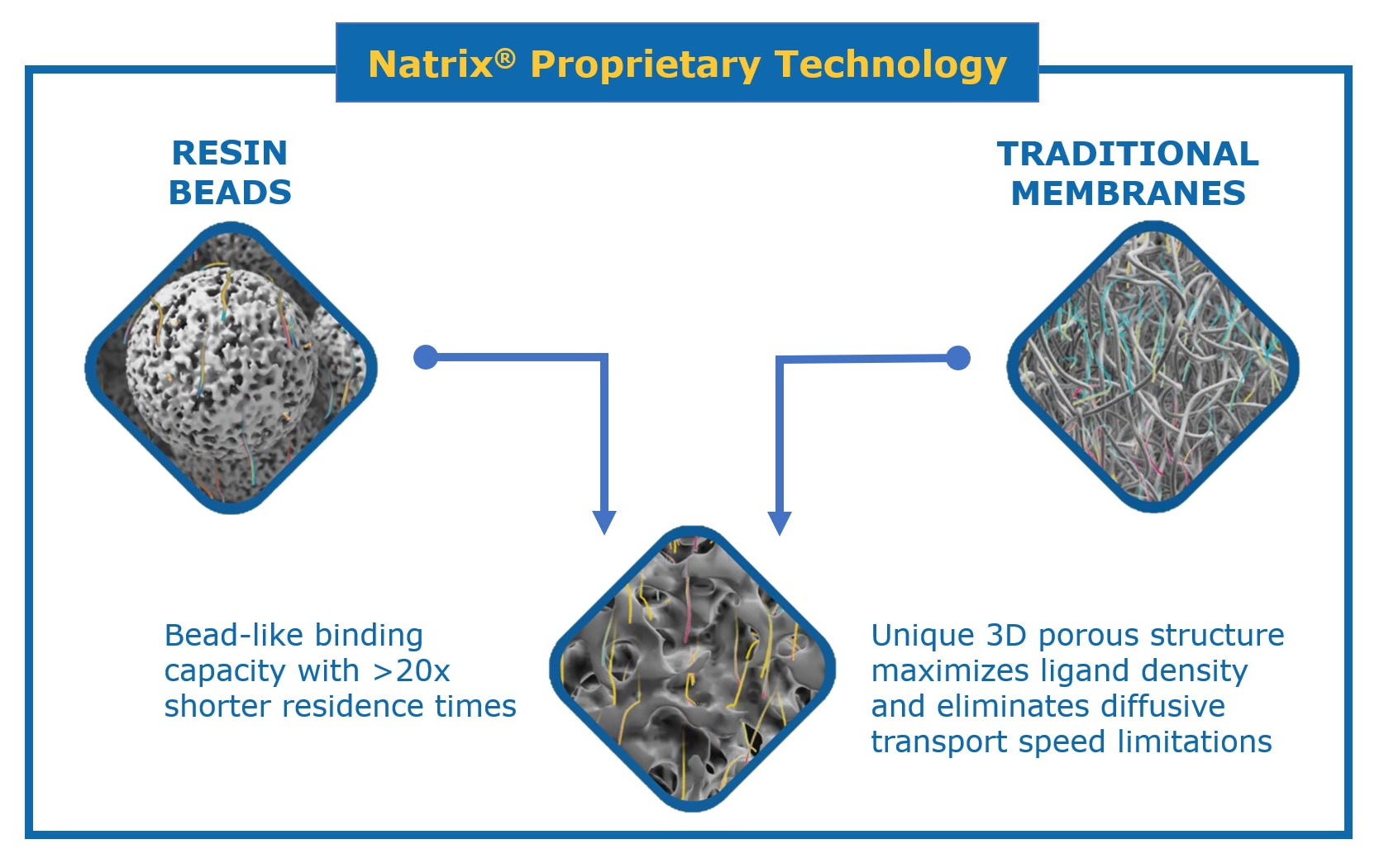 Natrix® Membrane Chromatography Technology