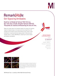 Merck:/Freestyle/BI-Bioscience/Antibodies-Assays/CellSig-Flyer-Remarkable.jpg