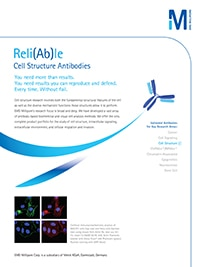 Merck:/Freestyle/BI-Bioscience/Antibodies-Assays/cell-structure-images/Antibody_Feature_CellStruc_EM.jpg