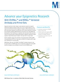Merck:/Freestyle/BI-Bioscience/Antibodies-Assays/epigenetics-images/advance-epigentics-research-cover.jpg