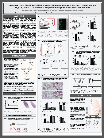 Merck:/Freestyle/BI-Bioscience/Cell-Analysis/amnis/Amins2-images/Disciplines/Virology_Poster.png