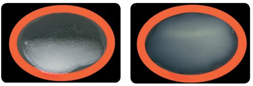 Latex agglutination on a slide using Estapor<sup>®</sup> K 080 microspheres, left (+), right (-).